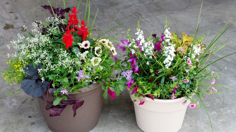 Beautiful porch planters for Beautiful planters